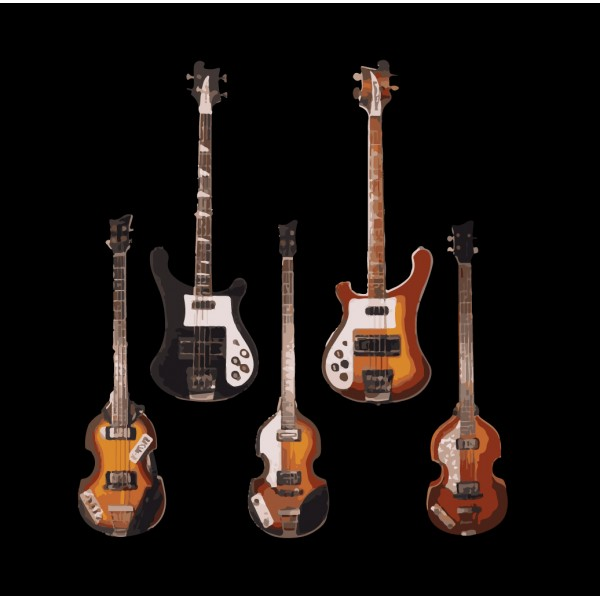 Paul McCartney Guitars